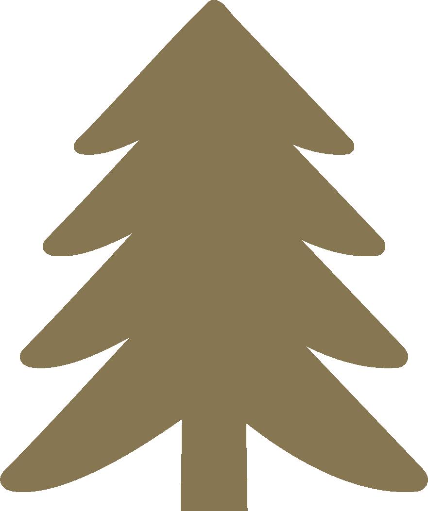 Ster Kerstpakketten - Navbar icon